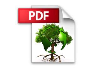 pdf_bild_indien