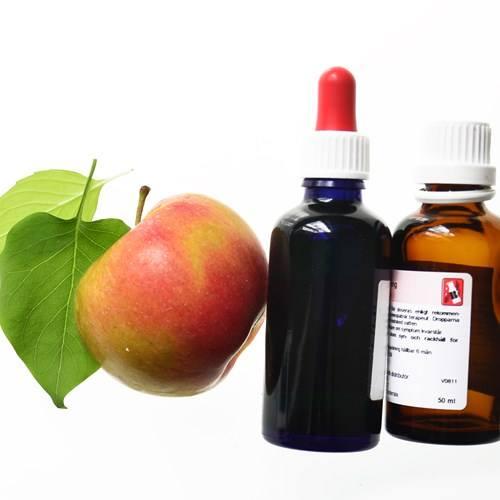 homeopatiutbildning
